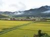 渡川(山口)