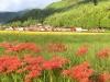船平山(山口)
