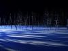 青池ライトアップ